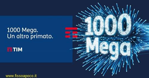 TIM 1000 mega